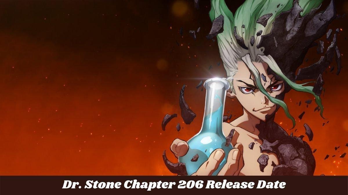dr stone c 206